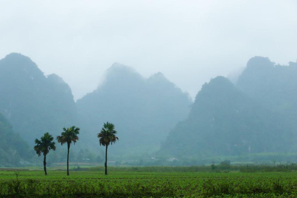 Yen Phu Village in fog