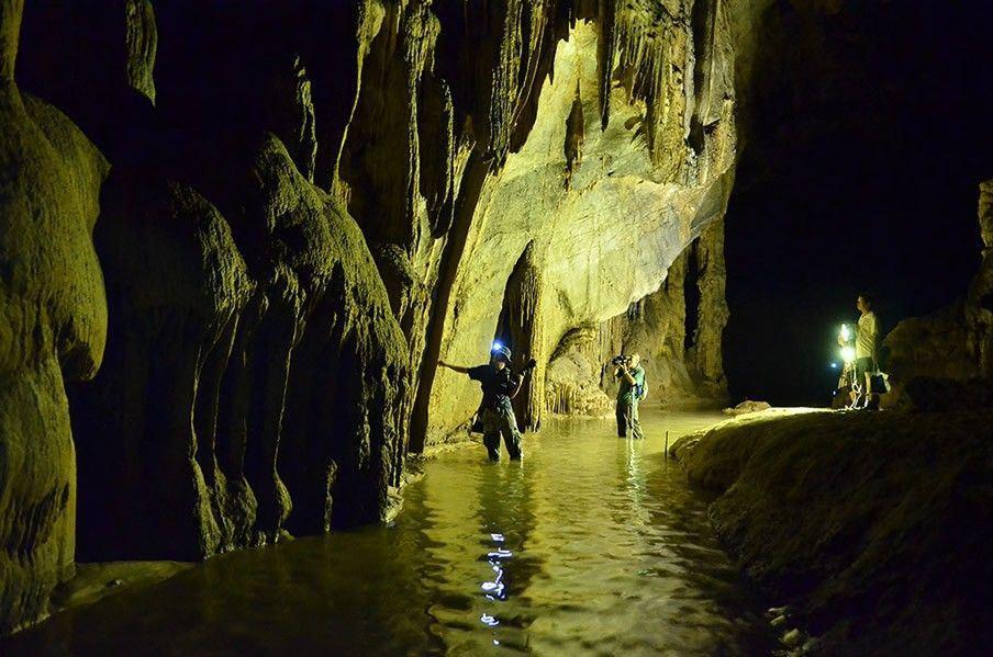 dong thien duong paradise cave phong nha quang binh (1)