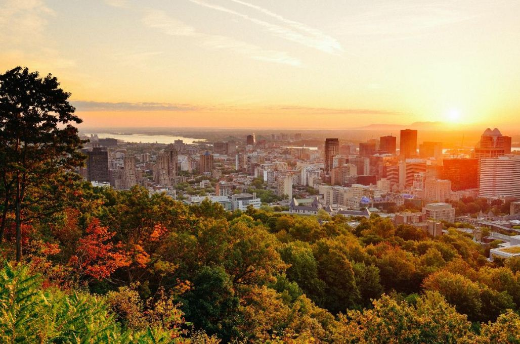 sunrise Montreal from above Mont Royal 2. Image of Montreal travel blog
