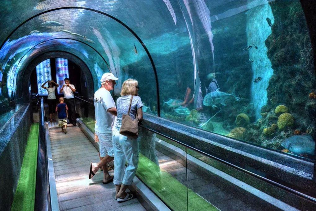 phuket water aquarium. image of phuket travel blog