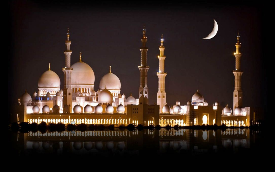 sheikh zayed mosque dubai (1)