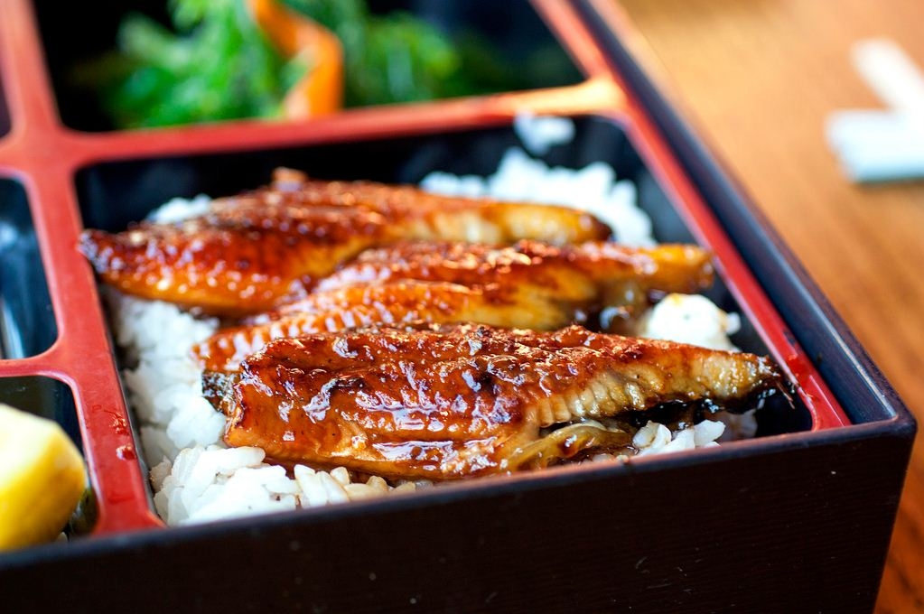 unagi eel japan how to cook unagi unagi sauce (1)