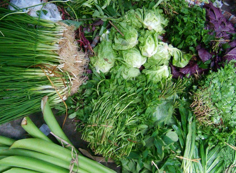 2herbs in vietnamese market vietnamese cuisine (2)
