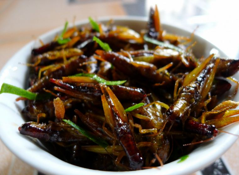 vietnamese insects dishes (1)