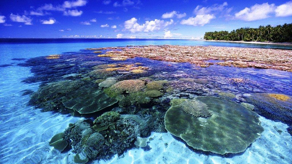 coral island-koh larn-thailand (17)