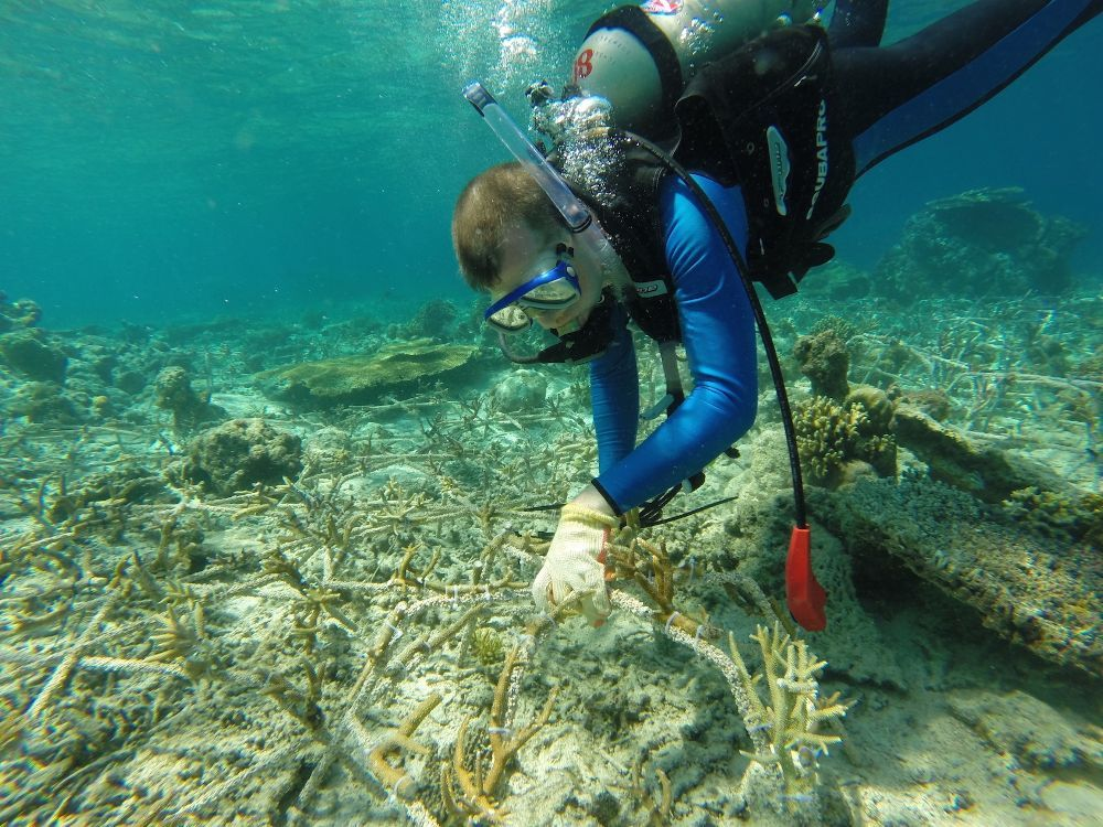 coral island-koh larn-thailand (20)