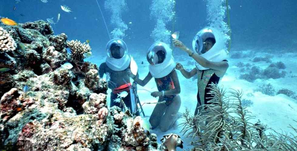 diving koh larn island thailand travel guide travel blog 5