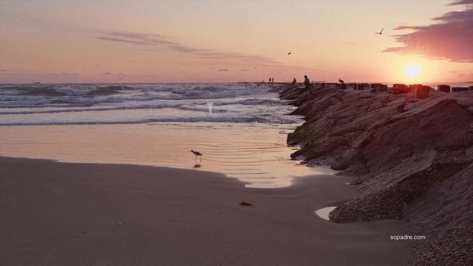 Uss Best Nudist Beaches  Top 6 Best Nude Beaches In -8113