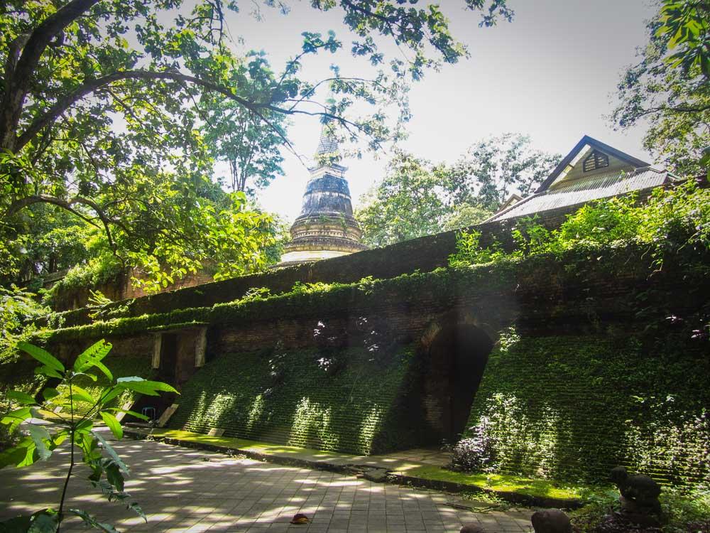 Wat Umong temple chiang mai
