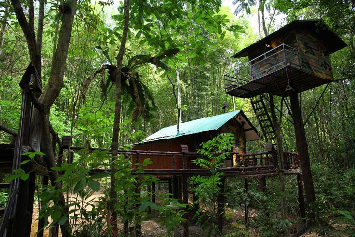 Khao-sok national park tree houses in Khao Sok National Park
