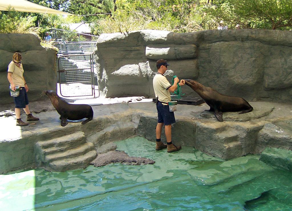 Ueno Zoo, Tokyo