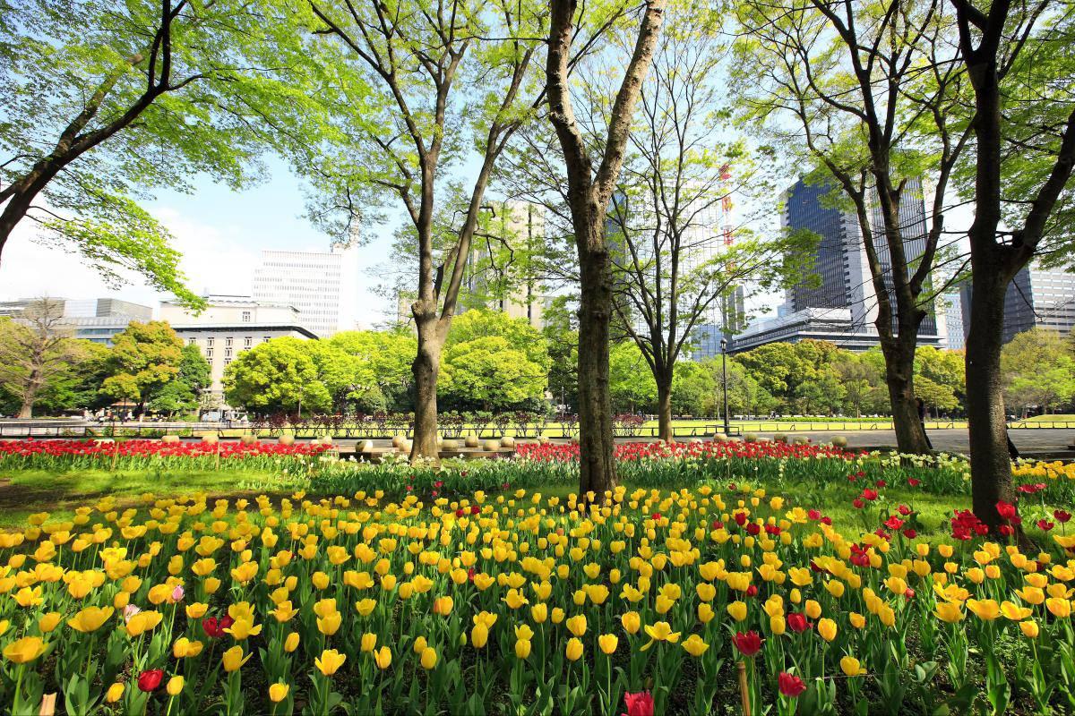 Hibiya-koen-Park-Tokyo Image of Tokyo suggested itinerary blog.