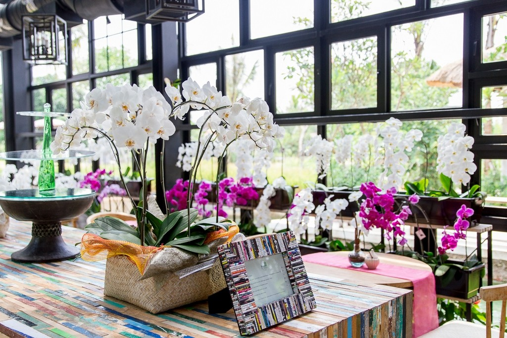 Orchid Tea Lounge -best-coffee-shops-in-bali4