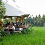 Top 10 best cafes in Bali you must visit