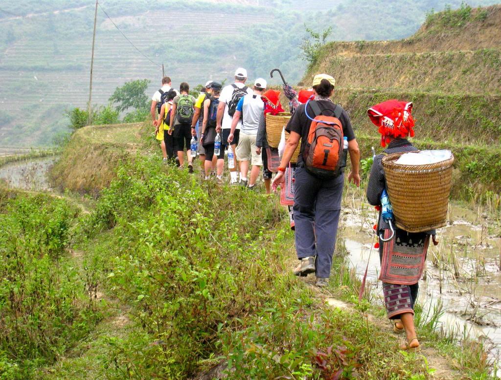 Sapa-trekking-tours Image of Sapa trekking blog.
