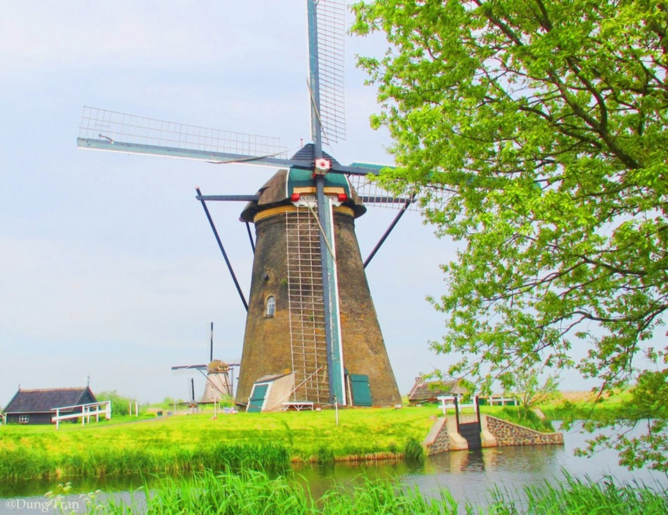 Netherlands-best experiences-paradise for you (14)
