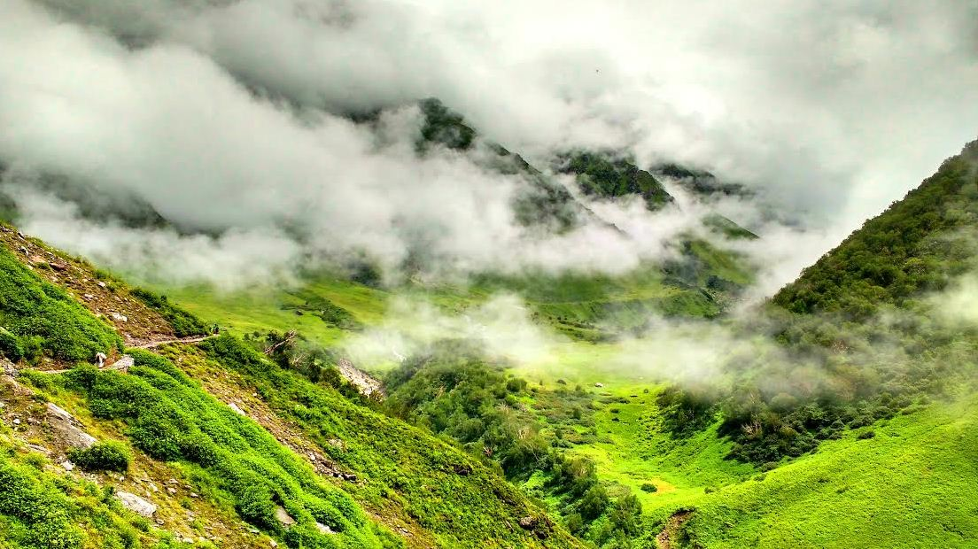 1valley of flowers india bhyundar valley how to reach valley of flowers (2)