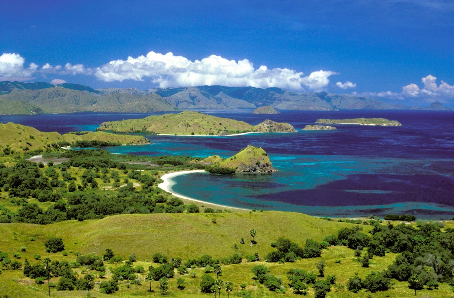 komodo island tour travel blog indonesia