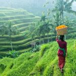 Bali one day tour & Bali itinerary 1 day — How to spend one perfect day in Bali?