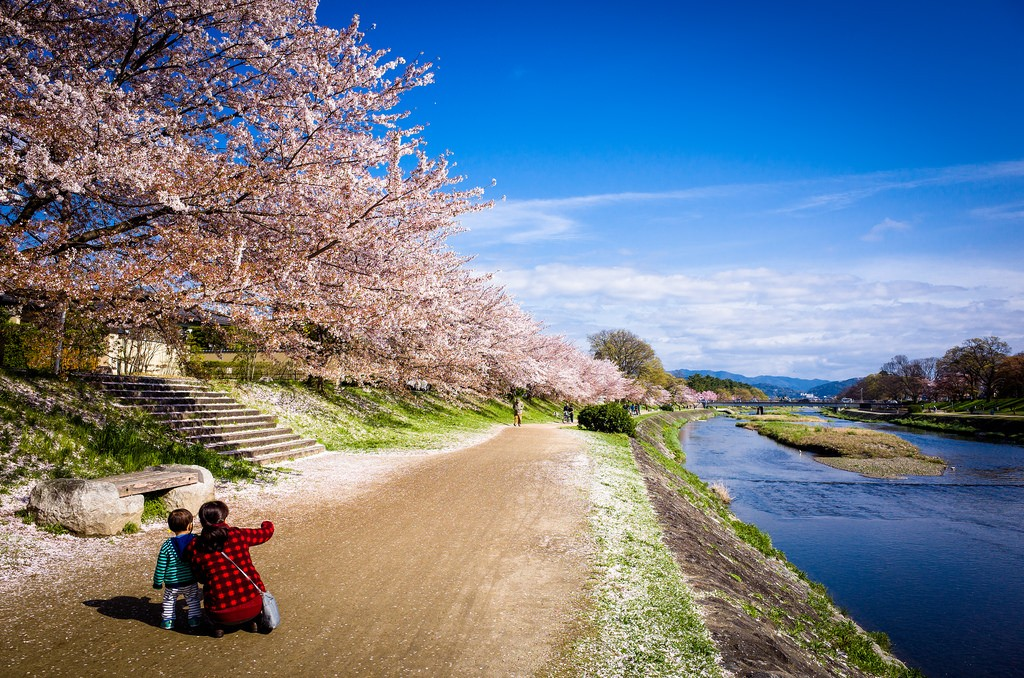 Kamogawa River, Kyoto2 Credit: cool things to do in Kyoto blog.
