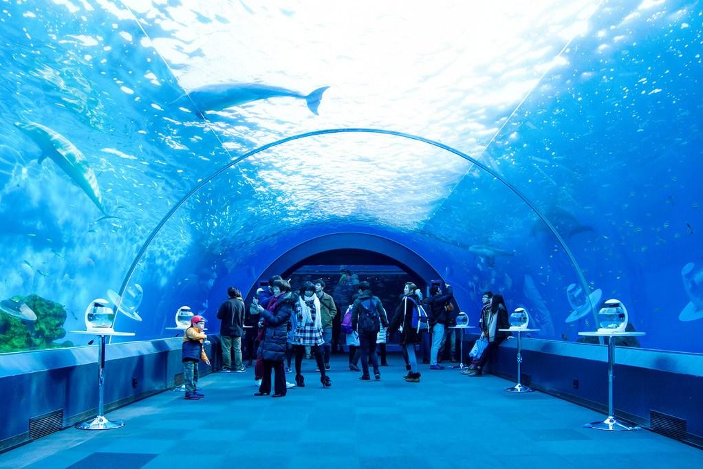 Hakkeijima Sea Paradise tokyo1 best aquarium in tokyo tokyo aquarium tokyo aquarium japan