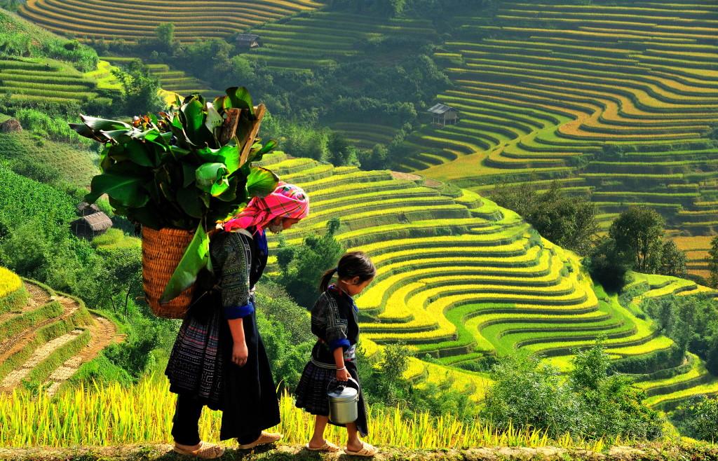 Phin Ho, Bat Xat, Lao Cai