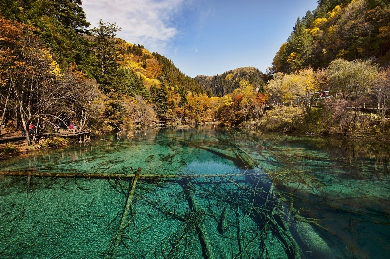Jiuzhaigou autumn china (1)
