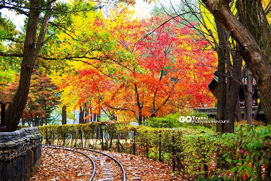 Top 5 Most Beautiful Fall Foliage Destinations In Asia Australia Living Nomads Travel