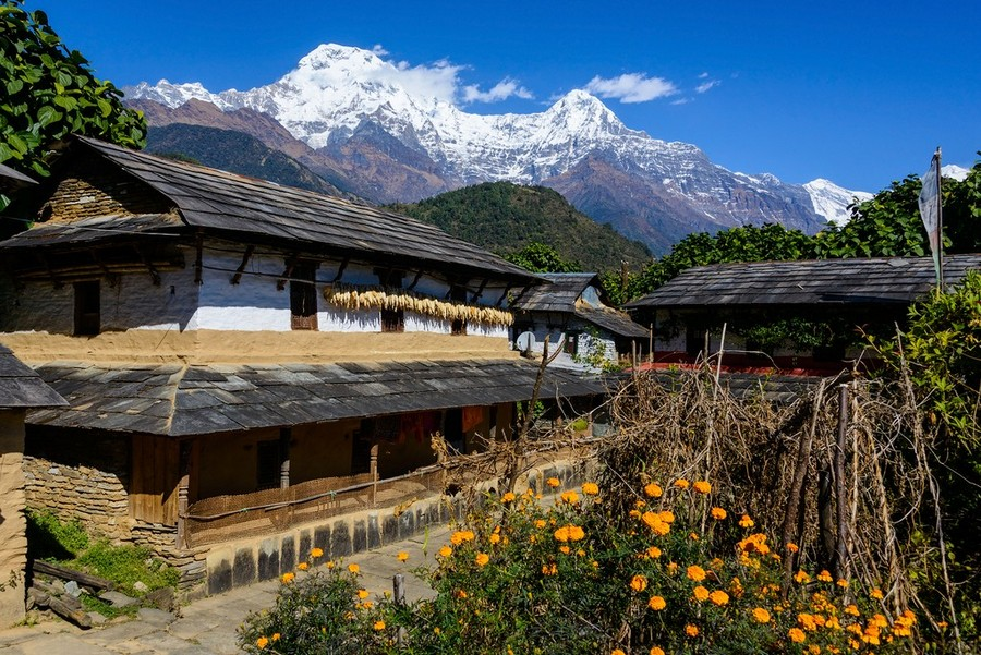 nepal autumn best fall foliage destinations in asia (1)