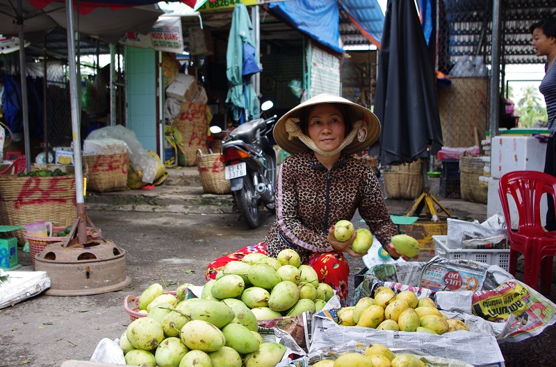 mekong delta travel blog tips southern vietnam (1)