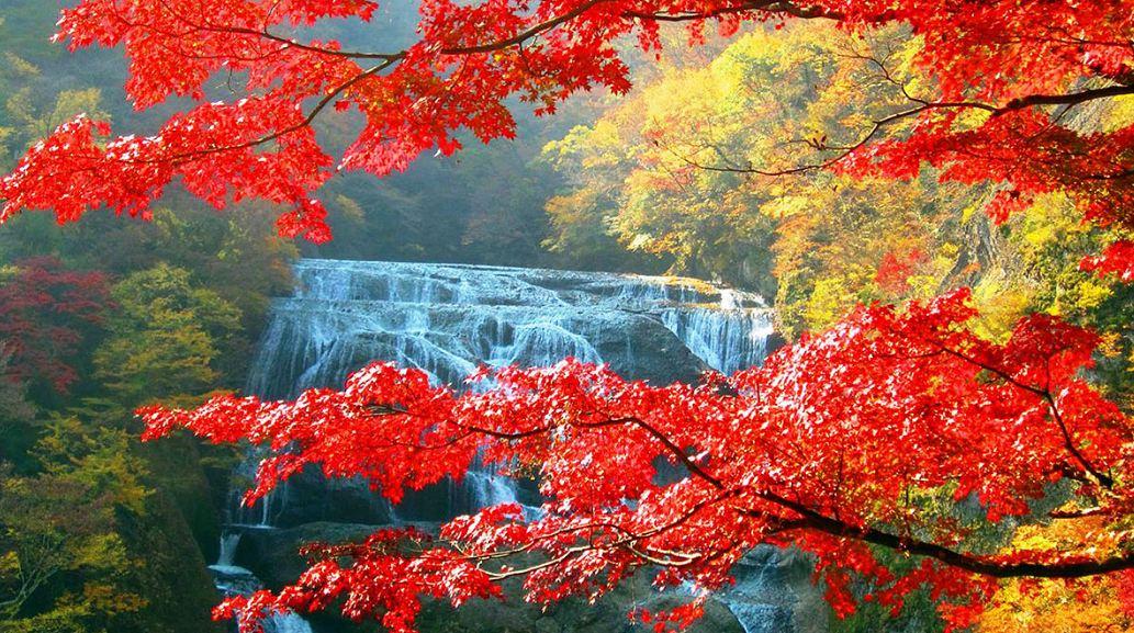 Fukuroda Falls (Ibaraki)6