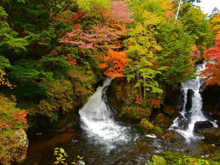 Picture: Japanese waterfall in autumn blog.