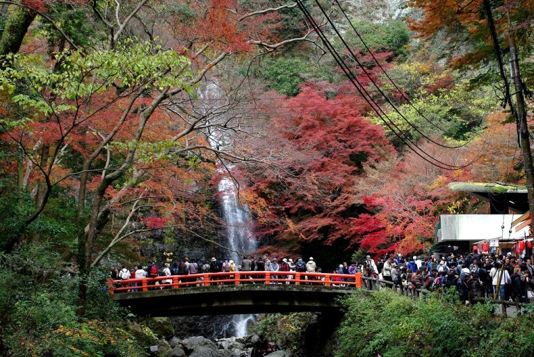 minoo_waterfall_in_autumn_osaka