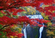 Picture: Japanese waterfall blog.