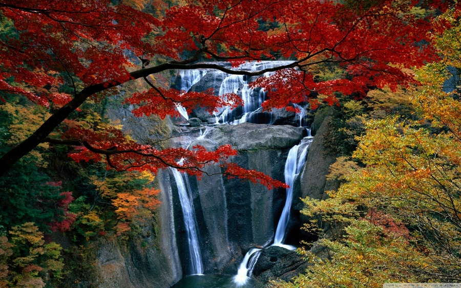 Picture: Japanese waterfall blog. fukuoka falls