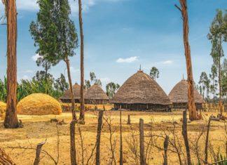 8 days in Ethiopia