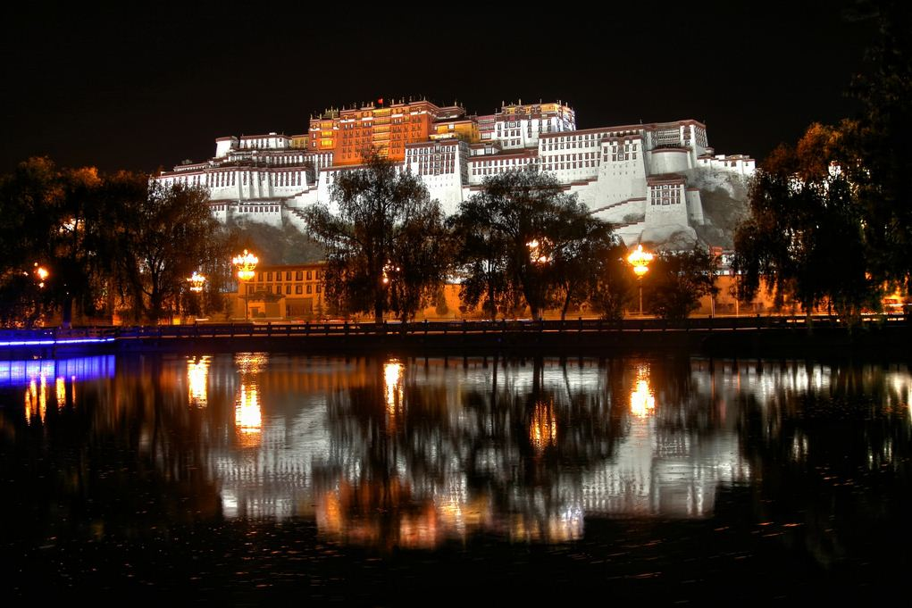 potala palace tibet at night