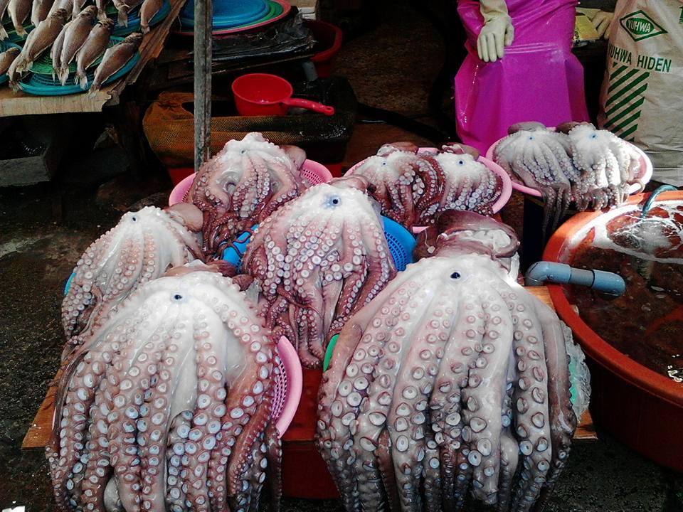 Jagalchi Fish Market2