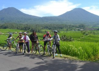 how to get around bali 2