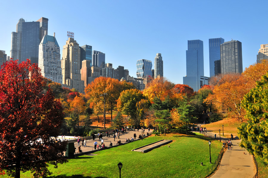 Central Park, New York4