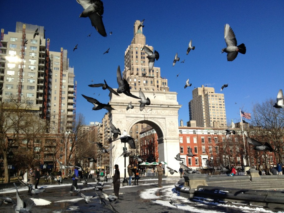 Washington Square Park3