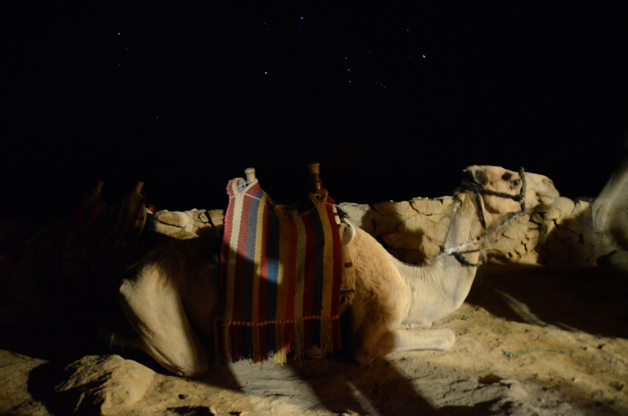 Picture: Sinai trek blog.