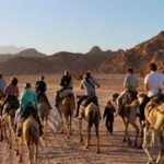 Sinai blog — A journey to the sacred land of Egypt