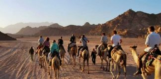 sinai travel guide sinai egypt travel blog sinai trek sinai peninsula (1)