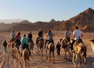 sinai travel guide sinai egypt travel blog sinai trek sinai peninsula (1)