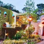 Explore Ghibli Museum Tokyo — One of the best places you must visit in Tokyo