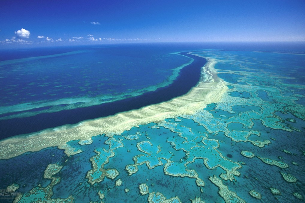 Great Barrier Reef, Australia Credit: places to visit before they disappear blog.