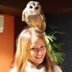 Visiting Owl Shrine Café, Tokyo — Healing the soul by cuteness