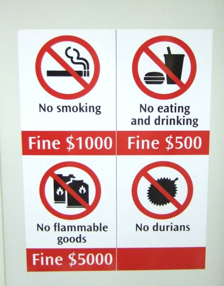 singapore-things are not allowed to do in singapore (11)