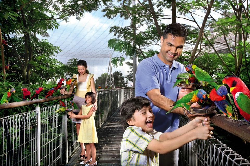 jurong-birdpark Photo: Singapore budget trip itinerary blog.